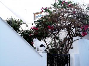 Grecia-Naxos